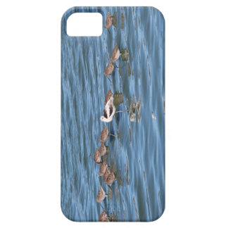 Stand out in the Crowd iPhone SE/5/5s Case