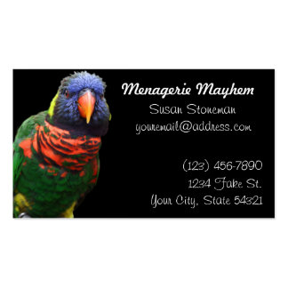 Stand Out Rainbow Lorikeet Business Cards