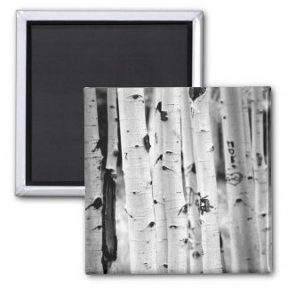 stand tall Aspen's 2 Inch Square Magnet
