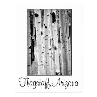 Stand tall Aspen's Flagstaff Postcard