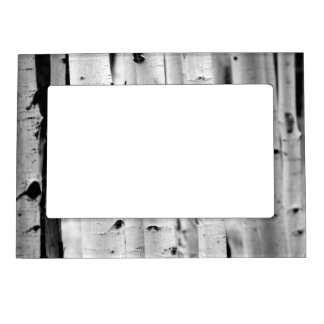 Stand tall Aspens Magnetic Photo Frame
