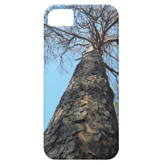 Stand Tall & Be Strong Pinetree iPhone Skin Cover