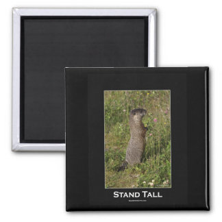 Stand Tall Marmot Magnet