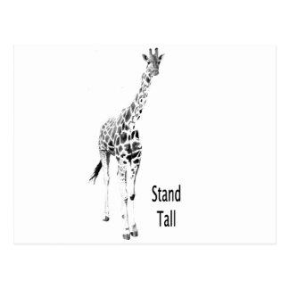 Stand Tall Postcard