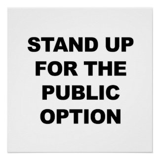 Stand Up for the Public Option Poster
