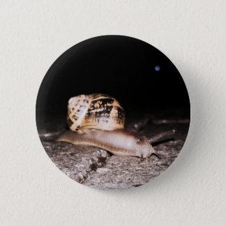 Standard, 2¼ Inch Round Garden Snail Button