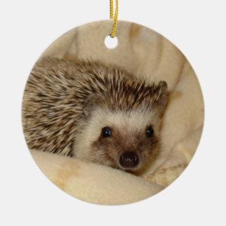 Standard hedgehog face ornament