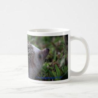 standard hedgehog mug