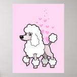 Standard/Miniature/Toy Poodle Love (show cut) Poster