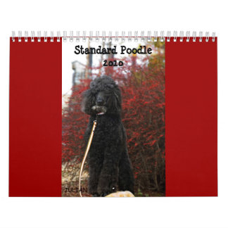Standard Poodle 2010 Wall Calendars