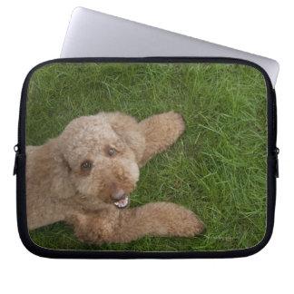 standard poodle 2 laptop computer sleeves