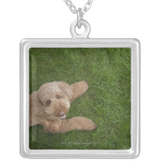 standard poodle 2 silver plated necklace