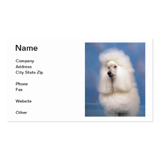 Standard Poodle Business Cards