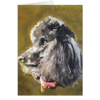 Standard Poodle Card