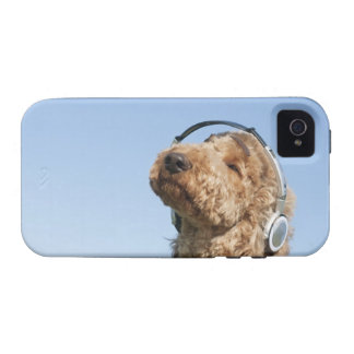 Standard Poodle iPhone 4/4S Cover
