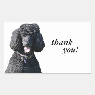 Standard Poodle dog beautiful photo dog stickers