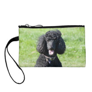 Standard Poodle dog black beautiful photo Coin Wallet