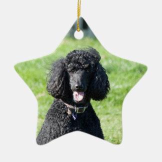Standard Poodle dog black beautiful photo portrait Ceramic Ornament