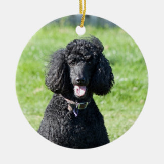 Standard Poodle dog black beautiful photo portrait Double-Sided Ceramic Round Christmas Ornament