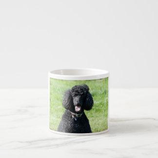 Standard Poodle dog black beautiful photo portrait Espresso Cup