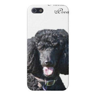 Standard Poodle dog black beautiful photo portrait iPhone SE/5/5s Cover