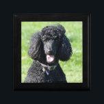 "Standard Poodle dog black beautiful photo portrait Keepsake Box<br><div class=""desc"">Beautiful photo of a black standard poodle dog trinket box,   gift box,  jewelry box.  great gift idea for dog lovers</div>"