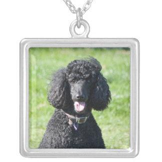 Standard Poodle dog black beautiful photo portrait Silver Plated Necklace