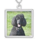 Standard Poodle dog black beautiful photo portrait Square Pendant Necklace
