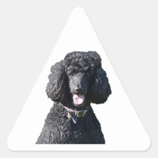 Standard Poodle dog black beautiful photo portrait Triangle Sticker