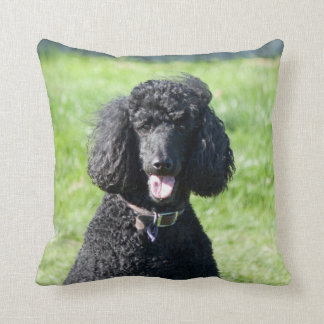 Standard Poodle dog black photo cushion pillow