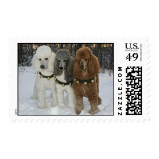 Standard Poodle Howliday stamps