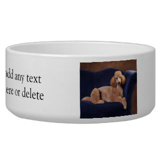 Standard Poodle on Blue Velvet Loveseat Bowl