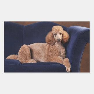 Standard Poodle on Blue Velvet Loveseat Rectangular Sticker