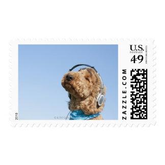 Standard Poodle Stamps