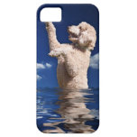 Standard Poodle Reflections iPhone 5 Cases