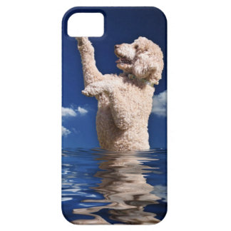 Standard Poodle Reflections iPhone SE/5/5s Case