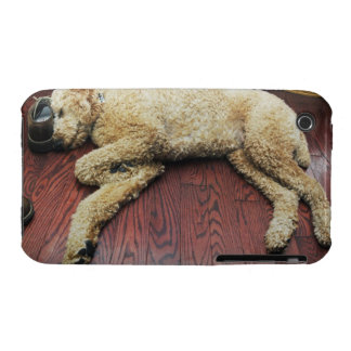 Standard Poodle Sleeping on Floor iPhone 3 Case-Mate Cases