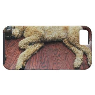 Standard Poodle Sleeping on Floor iPhone SE/5/5s Case