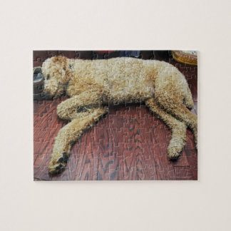 Standard Poodle Sleeping on Floor Jigsaw Puzzle