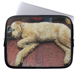 Standard Poodle Sleeping on Floor Laptop Computer Sleeve