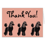 Standard Poodles Rosy Peach Thank You Card