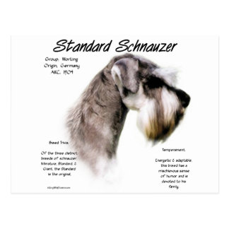 Standard Schnauzer History Design Postcard