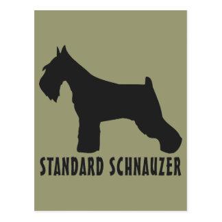 Standard Schnauzer Postcard