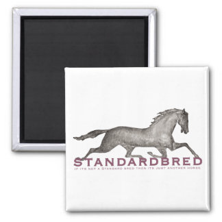 Standardbred 2 Inch Square Magnet