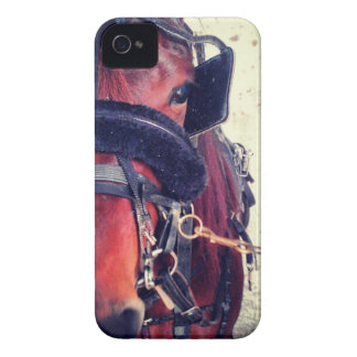 Standardbred Case-Mate iPhone 4 Protector