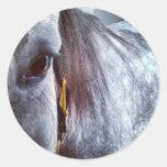 Standardbred gris etiqueta redonda