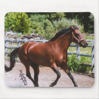 Standardbred Horse Galloping Mousepad