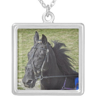 Standardbred Race Horse Necklace