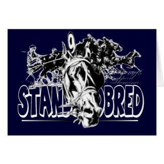 Standardbred Racing Cards