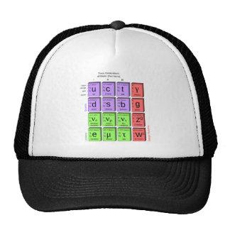 Standart model of elementary particles trucker hat